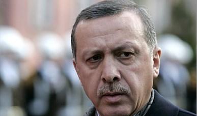 Ardogan - turkey