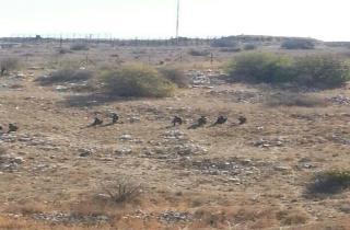 southlebanon-israelisoldiers