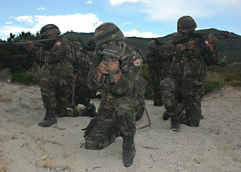 استنفار الجيش التركي لحماية ضريح