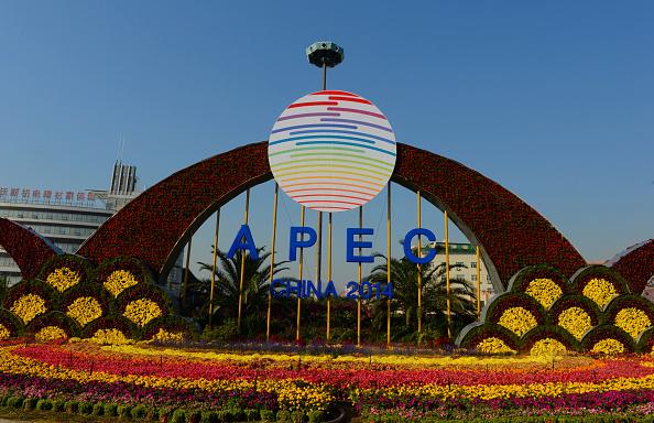 Flower Beds For APEC Appear In Beijing