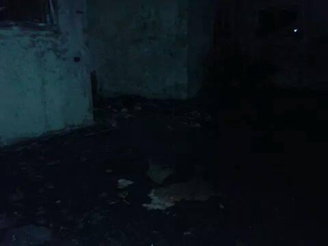 westbank-mosque-burned1