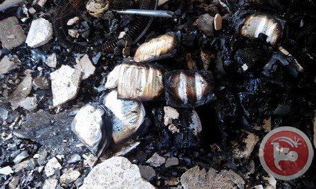 westbank-mosque-burned3