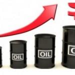 ارتفاع اسعار النفط مع استمرار حرائق الغابات في كندا