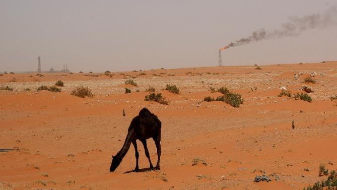 oil-camel