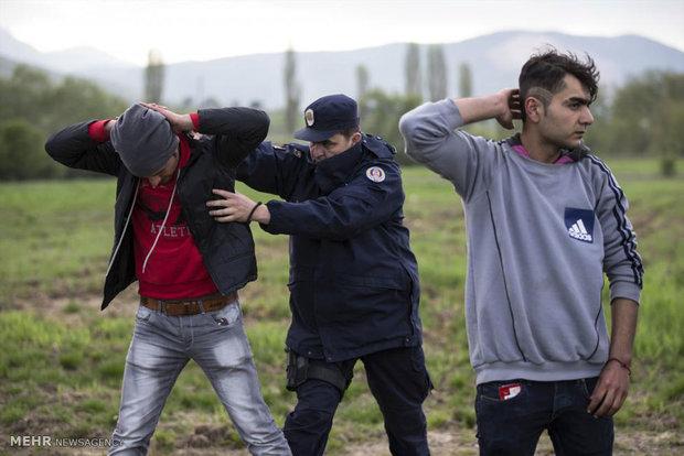 imegrates-europe-syria