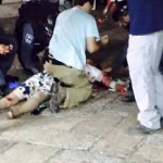 عملية طعن بطولية في القدس المحتلة.. والإحتلال يستنفر بحثاً عن 'شريك محتمل'
