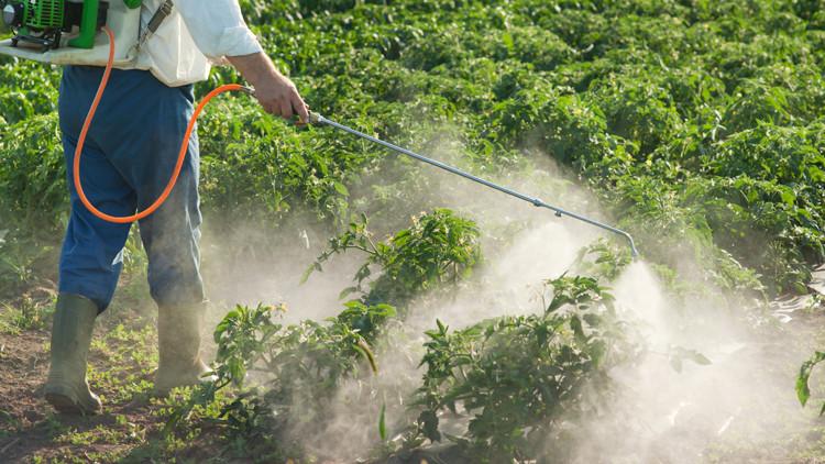 المبيدات تؤثر سلبا في جسم الأطفال