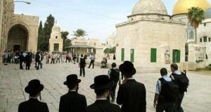 منظمة صهيونية تدعو لاقتحام المسجد الاقصى