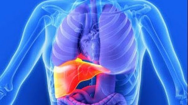 10 وصفات منزلية للوقاية من أمراض الكبد
