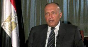 مصر تسعى للتوصل إلى حل سياسي في ليبيا