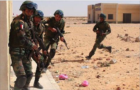 مصر: تبادل إطلاق نار في طريق الواحات ومقتل 13 إرهابياً