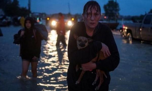 """إلزام متضرري إعصار """"هارفي"""" بالتعهد بعدم مقاطعة إسرائيل"""